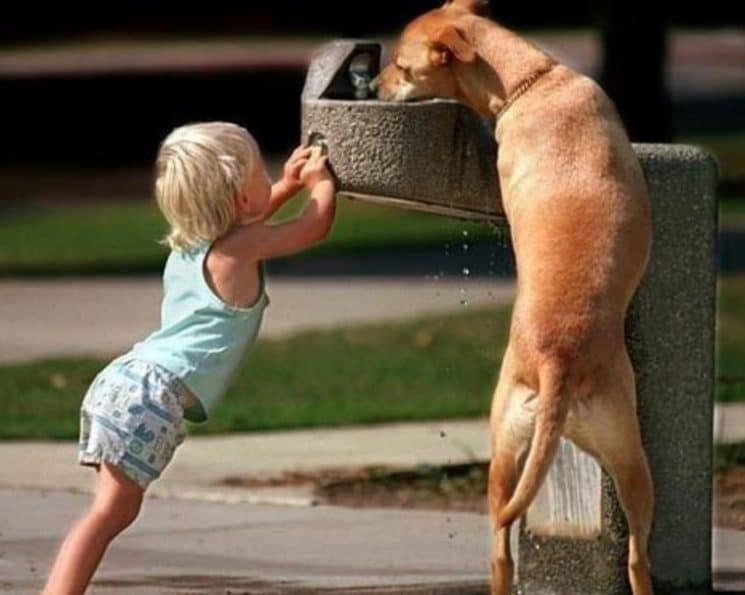 Innocence & amitié